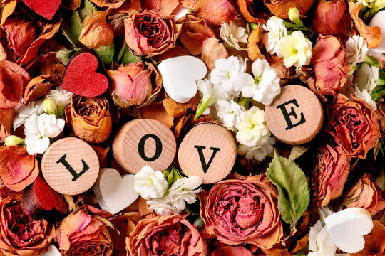 Beautiful botanical composition for st. Valentines Day. Creative layout with dry roses, petals, white flowers, small hearts and LOVE letters. Close up. Top view