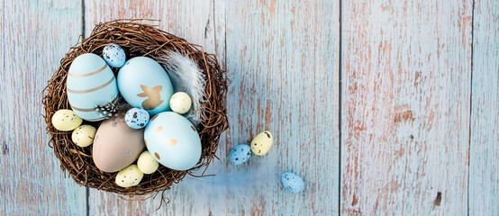 Banner.Easter eggs, feathers in a nest on a blue wooden background. The minimal concept of Easter....