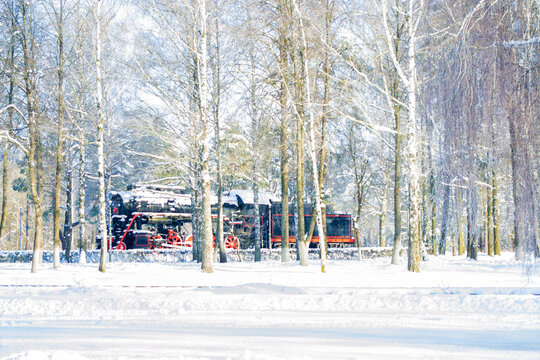 Train in the winter snowy forest.