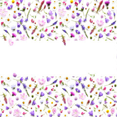 Fototapete - Frame with place for text from plants, wild flowers isolated on white background, top view. The concept of summer, spring, Mother's Day, March 8.