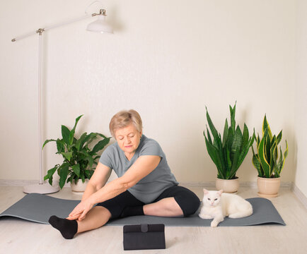 Fitness training online, senior woman at home stretching with cat and tablet computer laptop.