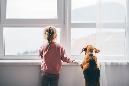 Dog and baby girl staring out a large window.