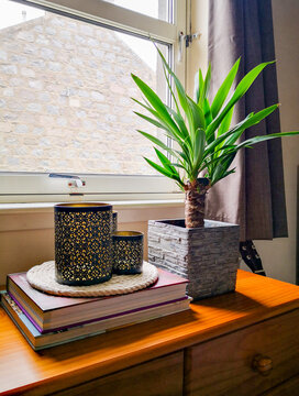 Minimalistic composition of yucca tree plant in stone pot with black candles on top of two books. Vignette by the window.