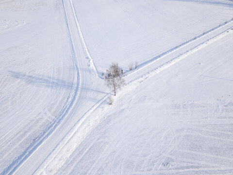 Top down view where you can see a white snow-covered field where a white snowy road branches off and there is a tree in the middle