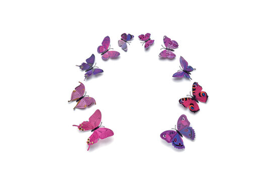 Beautiful colored butterflies of different sizes, isolated on a white background.