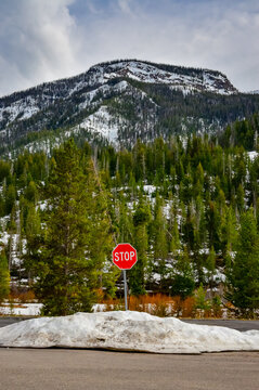 Closed road after snowfall in Yellowstone National Park