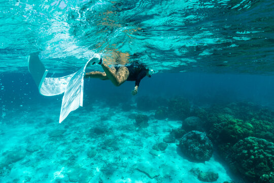 woman swimming freediving to see coral reefs.