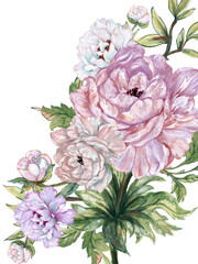 Watercolor Illustration peonies rose Blossom green leaves foliage asain style for invitation card backdrop background pattern