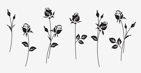 Fototapeta Set of decorative fresh blossoming rose silhouette with leaves isolated on white background. Flower icon. Vector stock illustration obraz