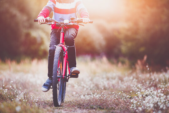 child on a bicycle in the forest in early morning