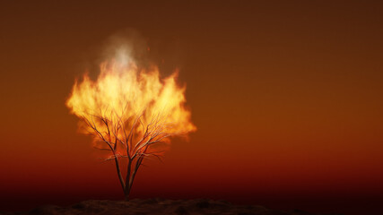 the burning bush religious symbol with space for your content
