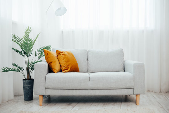 gray sofa with yellow pillow simple living room. modern living room with cozy sofa and flower in a pot - palm tree, background large light windows and curtains