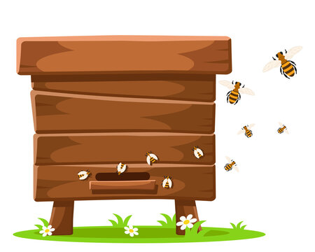 A wooden bee hive stands in a clearing