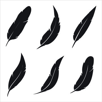 Feather icon isolated on white background. Trendy feather icons and modern feather symbols for logos, web, apps, UI. Simple feather sign icon.