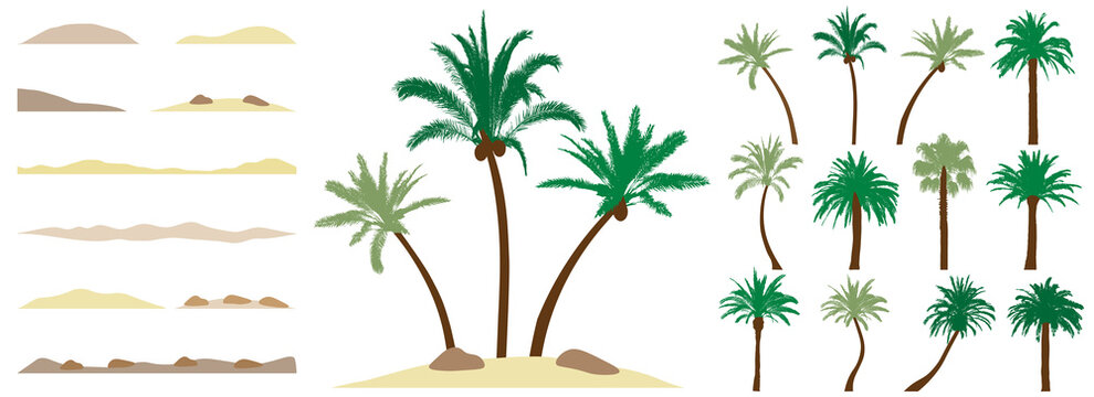 Palm trees, constructor kit. Beautiful palm trees, sand, stone. Collection of element for create beautiful exotic island, beach and etc. Vector illustration.