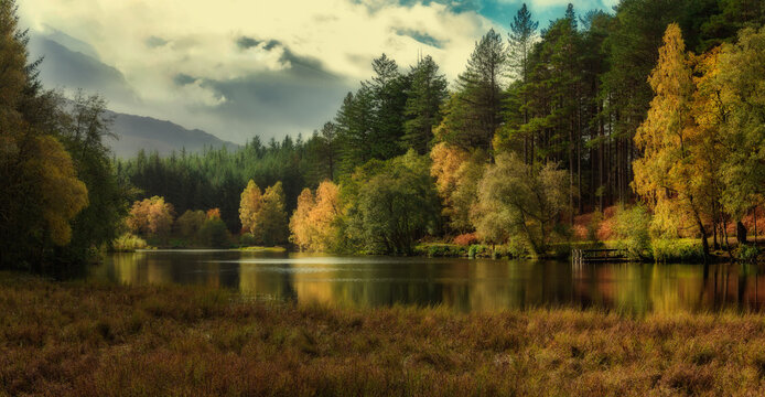 Autumn woods on a lake in the mountains