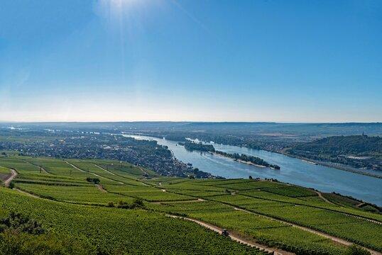 Blick über den Rhein bei Rüdesheim in Hessen, Deutschland