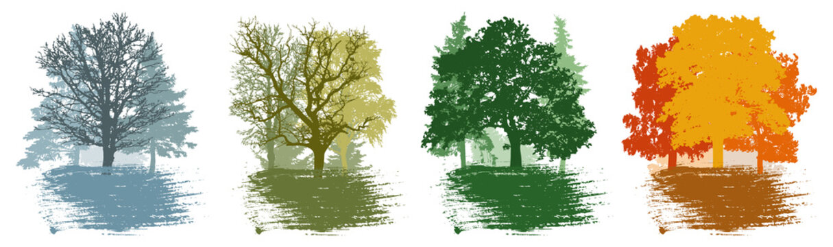 Four season, set of winter and spring and summer and autumn landscape, forest. Beautiful silhouettes of different trees. Vector illustration.