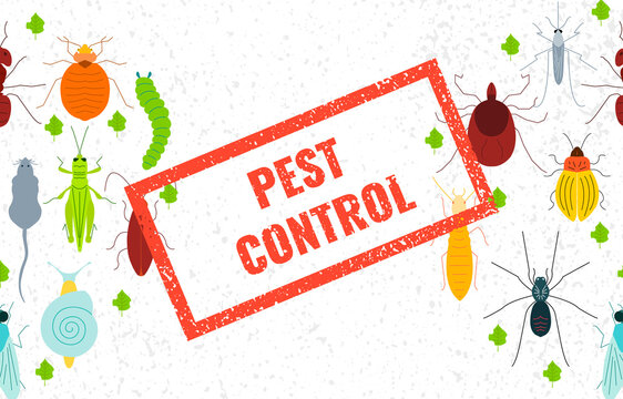 Set of pest insects and damaged leaves with red stamp on white background. Parasitic beetle concept. Perfect for exterminator service companies. Vector illustration.