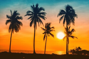 Silhouette Palm Trees On Beach Against Sky During Sunset