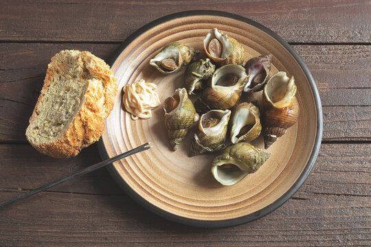 Traditional French dish - sea snails boiled with herbs in a plate and a piece of bread on a dark wooden table