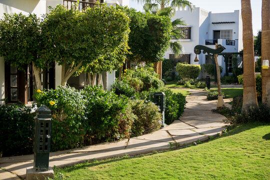 Luxury landscape design of the summer garden