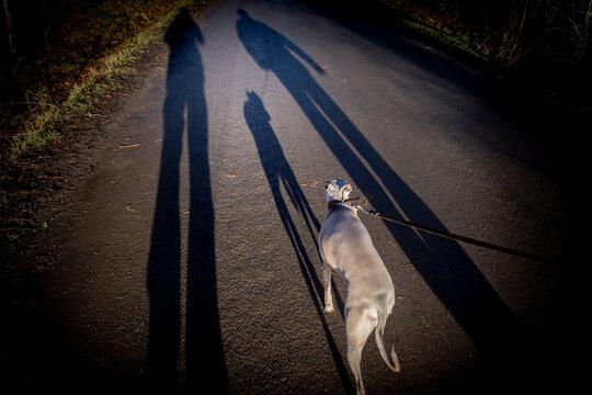 walking the dog in Scotland