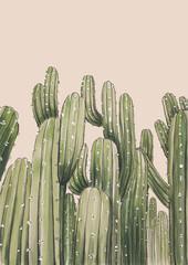 Fototapeta Kaktusy no2 obraz