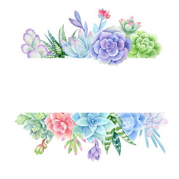 watercolor horizontal frame with succulents
