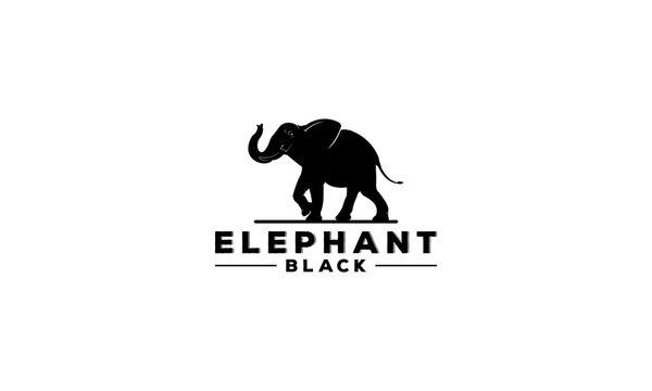 elephant logo on white backgroun