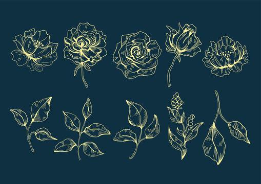 Flowers illustration 01 yellowline