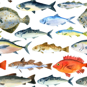 watercolor drawing seamless pattern with fishes