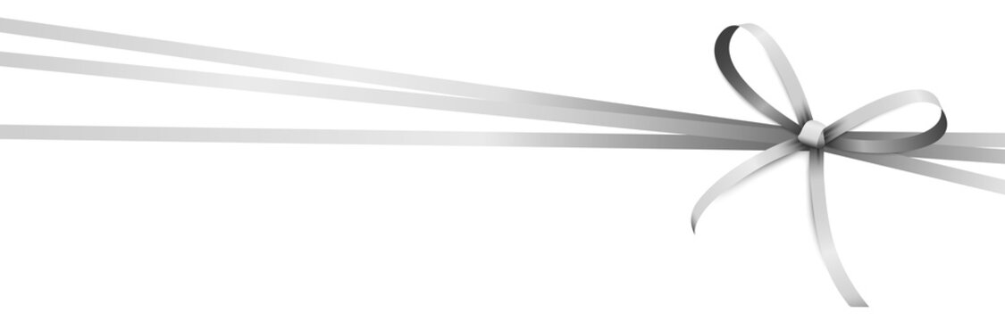 silver colored ribbon bow