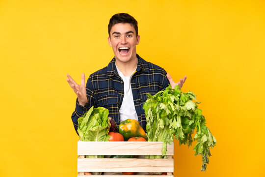 Teenager farmer man with freshly picked vegetables in a box unhappy and frustrated with something