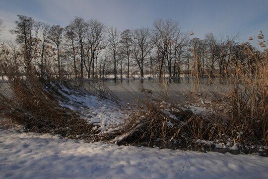 Winter im Spreewald an den Stradower Teichen