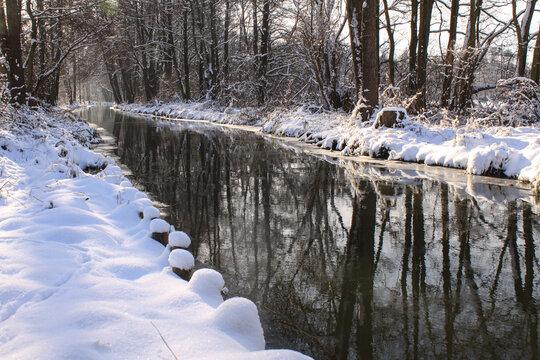 Winterlicher Spreewald bei Leipe