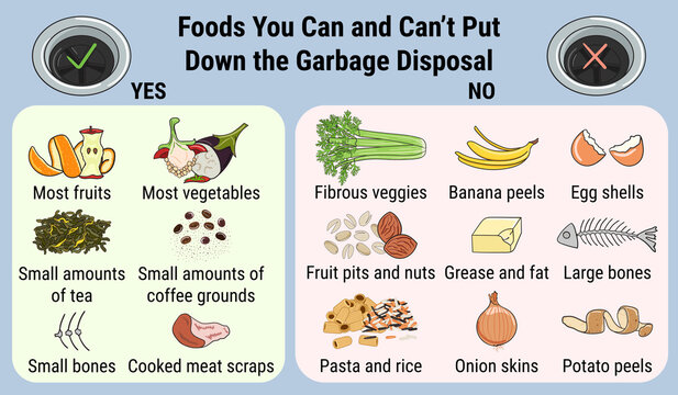 Infographic of food waste disposer for home kitchen sink with kitchen scraps falling into it. What you can throw into garbage disposal. Recycling organic waste