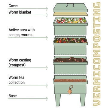 Infographic of vermicomposting. Components of vermicomposter. Vermicomposter schematic design. Worm composting. Recycling organic waste, fertilizer organic