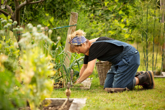 Woman tending to plants in summer vegetable garden