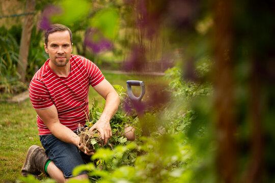 Portrait confident man harvesting vegetables in garden