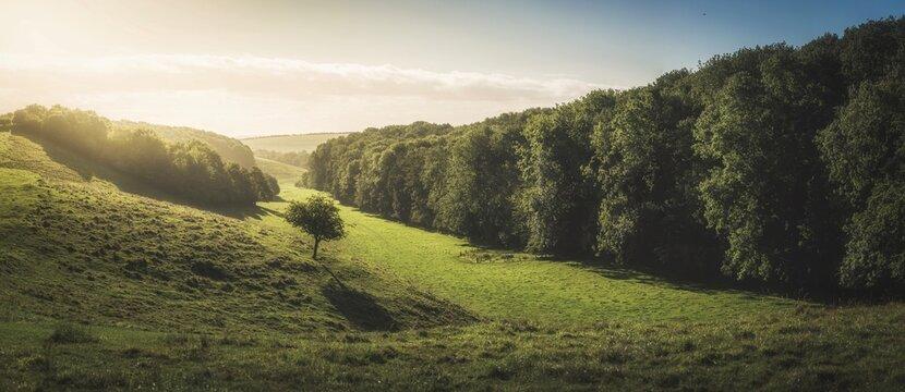 Rural countryside landscape, Lincolnshire, England, UK