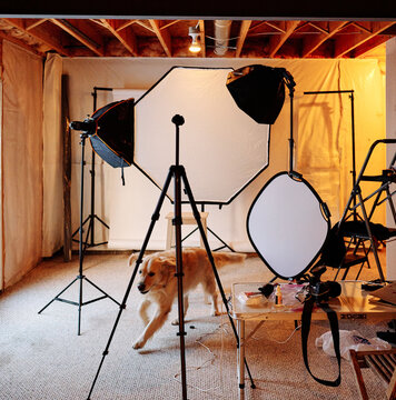lighting set up in a photography studio located in a basement of a house. you can see an octa box and reflector and tripods and stands.