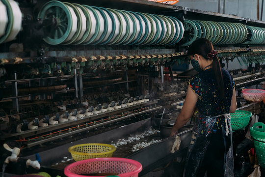 Female worker stands processing silk worms in a silk factory.
