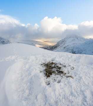 Leave no trace, a grass patch in snow from a wild camping site tent position