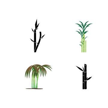 Sugarcan icon