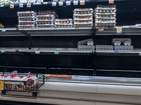 Seattle, WA / USA - circa March 2020: Low inventory of eggs inside a Safeway grocery store during the Covid-19 shelter in place order.