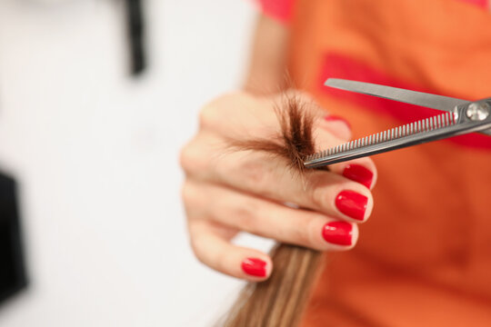 Hand of aster hairdresser holds split ends and scissors. haircut for long hair concept