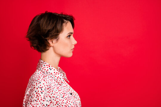 Profile side view portrait of lovely serious content brown-haired girl copy space ad isolated over bright red color background