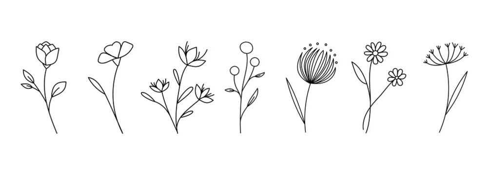 Botanical linear flower set. Abstract creative floral collection, minimalist flowery art for print, tattoo. Vector illustration