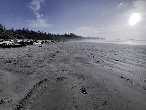 Beach in the Sun, Tofino, Bc